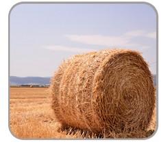 GPS应用于干草的防盗